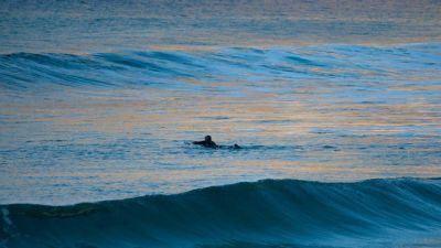 A surfer paddles out in the Ocean.