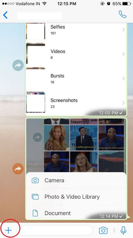WhatsApp support for GIFs