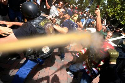 The protest turned ugly as fights broke out and the police used pepper spray to deter anti and pro-Trump protesters from clashing.