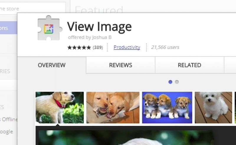 how to add view images button google images