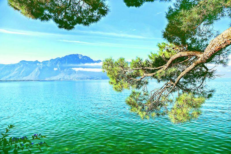 Overlooking lake Geneva from Montreux, Switzerland.