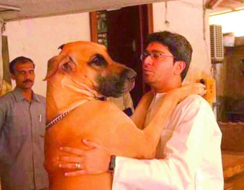 Raj Thackery owns Great Dane (German breed) and Pugs (originally from China) and Pitbulls (North American breed).