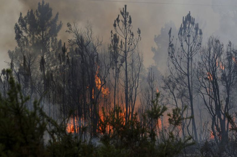 Almost 24 hours after the deaths Saturday night, fires were still churning across the forested hillsides of central Portugal.
