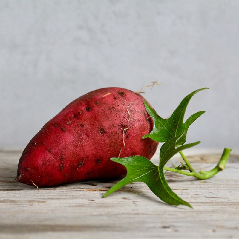 Sweet potato is one of the most versatile and healthy vegetables