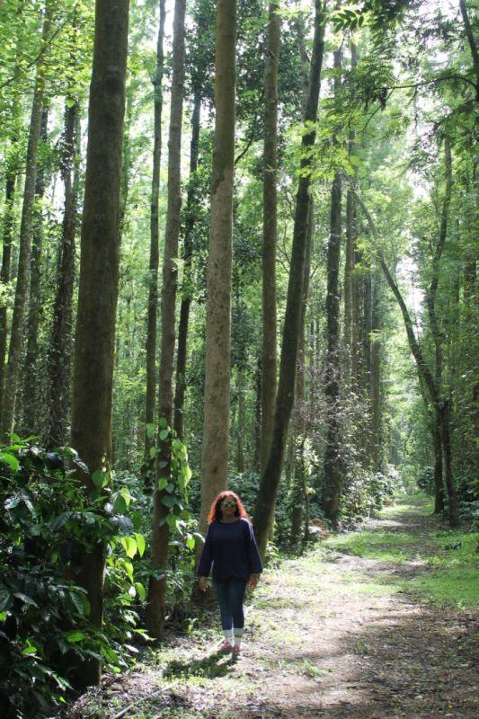 Walking through Chikmagulur