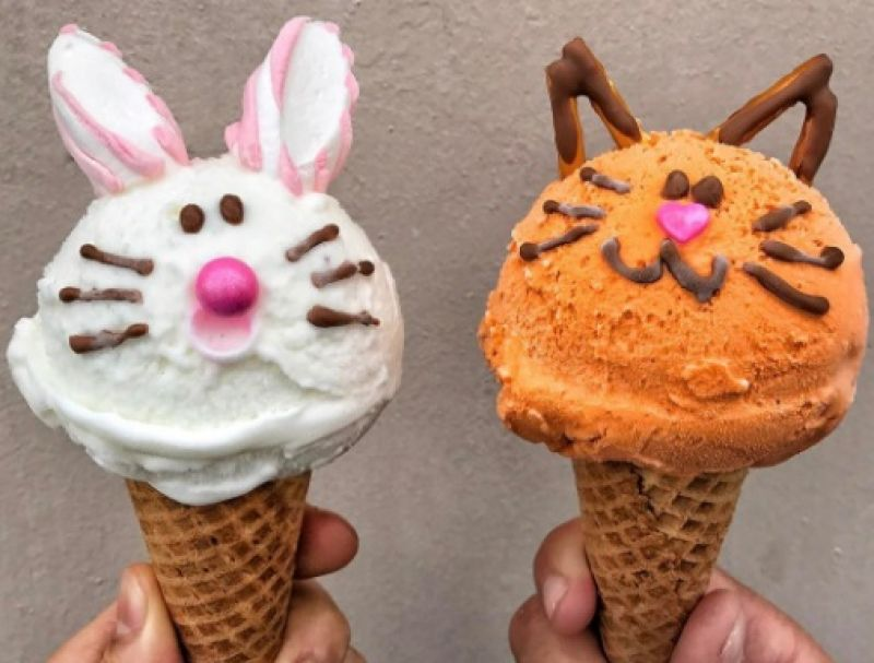These Ice Creams With A Twist Will Brighten Your Day