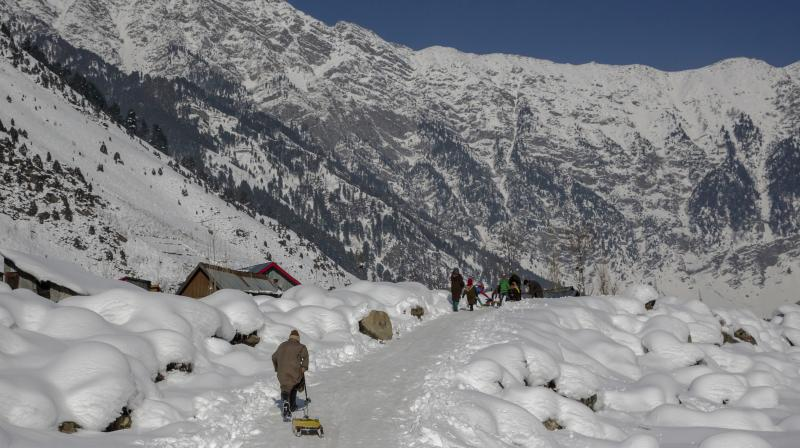 Cold continues to bite north India