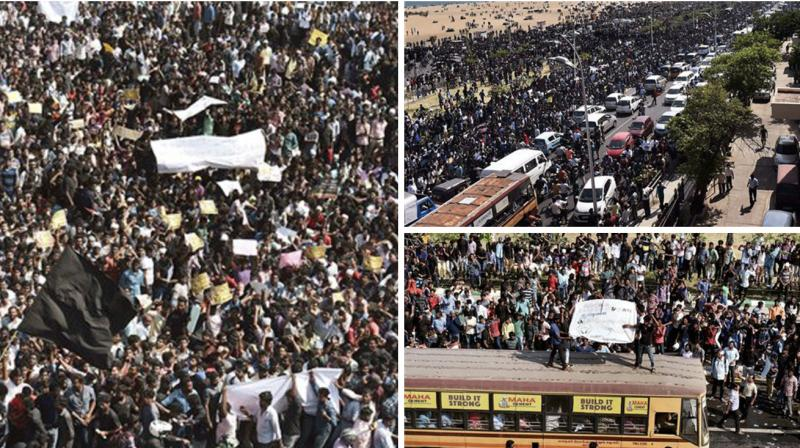 Thousands of students gathered on the sands of Marina in Chennai as protests demanding lifting of the ban on bull-taming sport 'Jallikattu' snowballed across Tamil Nadu.