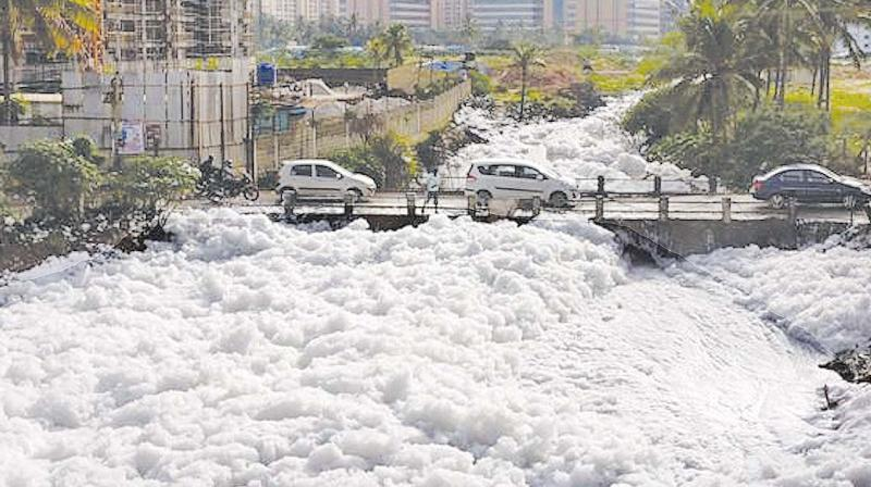 Bengaluru lake hazard: Toxic froth from Bellandur lake hits motorists