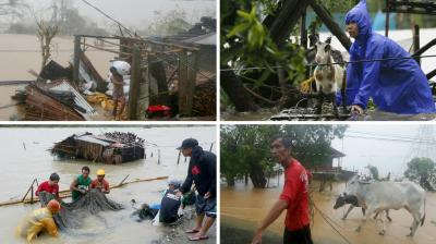 Super Typhoon Haima, the strongest storm to hit the Philippines in three years, ripped through major rice growing regions, damaging crops and houses, and forced more than 90,000 people to flee to safer ground, officials said on Thursday.