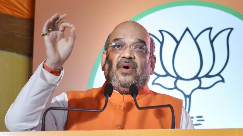 BJP President Amit Shah (Photo: PTI)