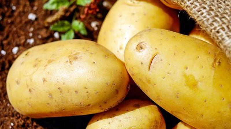 A serving of the lab-engineered potato has the potential to provide as much as 42% of a child's recommended daily intake of vit A. (Photo: Pixabay)