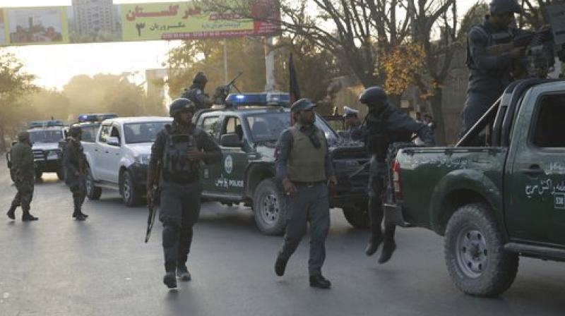 IS bomber kills five outside embassies in Kabul