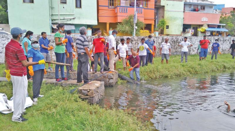 Students from IIT  Madras join hands with Art of Living  volunteers to clean a  pond in the city. (Photo: DC)