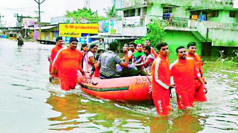 Water world: People being evacuated in Chennai. (Photo: DC)