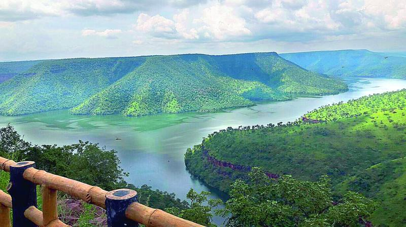 Telangana: 'Octopus Viewpoint' entices visitors
