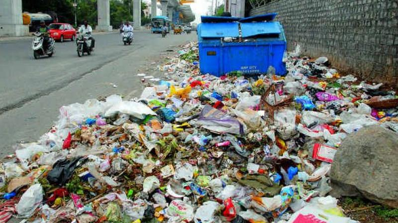 Pay rs fine for throwing waste in public place ngt