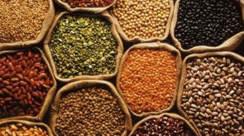 Of the five main categories, gram, tur and urad have the highest weight in WPI for pulses.