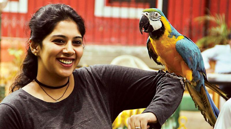 A pet lover displays  her pet macaw during a press conference on The fourth edition of Bangalore Pet Show at Press Club in Bengaluru on Saturday—KPN