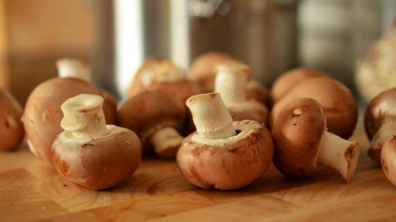 Feel fuller, longer with mushrooms