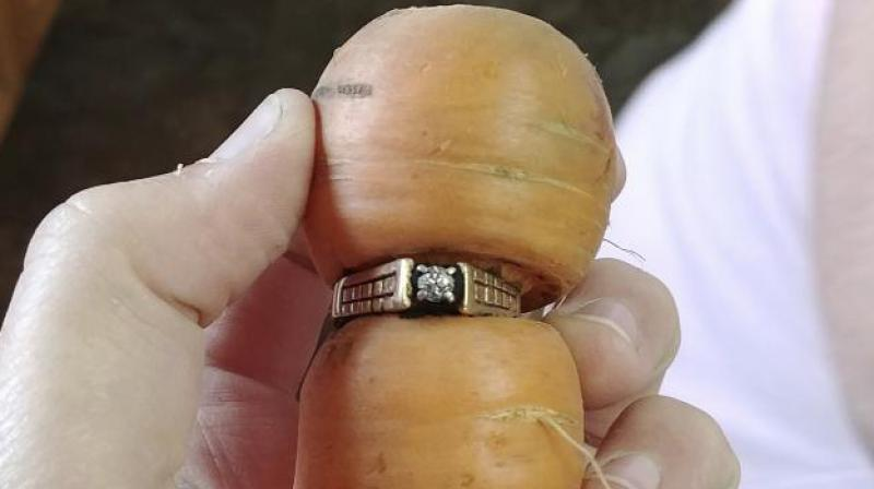 Sweden: Wedding ring 'found on carrot' after 16 years