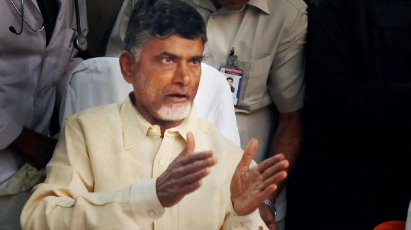 Andhra Pradesh Chief Minister N Chandrababu Naidu (Photo: PTI/File)