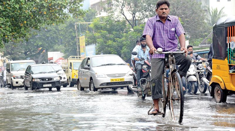 Motorists struggle to ride through waterlogged Flowers road at Kilpauk on Monday. Sewage is also mixed with rainwater.  (Photo: DC)