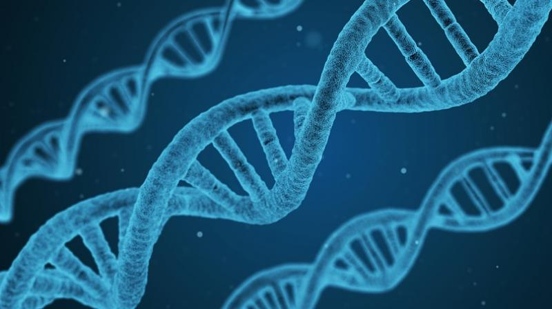 Study finds new way to reverse DNA damage caused by cancer treatment.