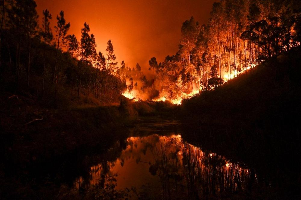 A raging forest fire in central Portugal killed at least 62 people as they desperately tried to flee, charring cars and trucks as it swept over roads.