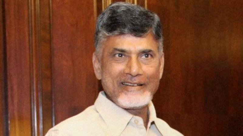 Andhra Pradesh Chief Minister N Chandrababu Naidu