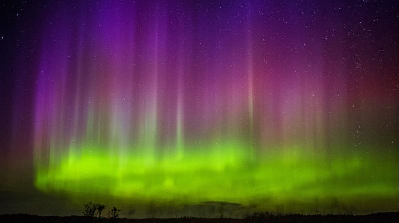 The northern lights shimmer in the sky above Kroshel, Minn., Sunday, Aug. 16, 2015. (Photo: AP)