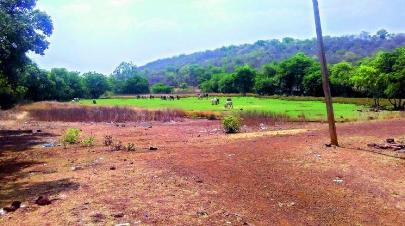 Vinod Reddy, a farmer from Kurmidda, said that land rates in villages were in the range of Rs 20 to 30 lakh per acre. (Representational image)