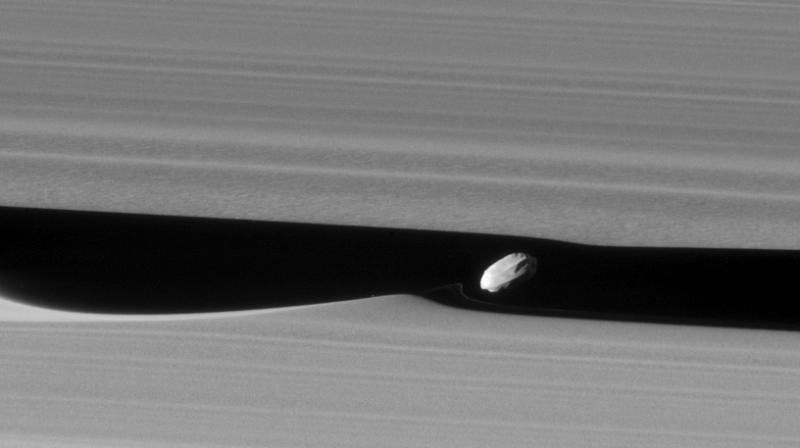 [ January 19, 2017 ] Saturn's shepherd moon Daphnis makes waves News