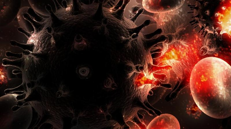 Researchers have found immune system may keep body from neutralizing HIV-1 virus (Photo: Pixabay)