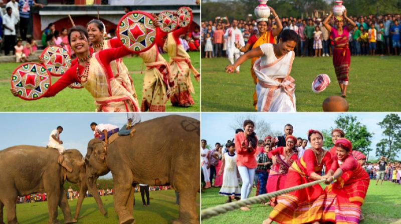 The Suwori tribal festival in Assam is celebrated by locals with traditional elephant fights, elephant races, horse race and tug of war. (Photo: AP)