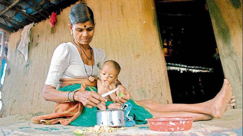Improving women's education, enhancing household food security can help to reduce malnutrition.