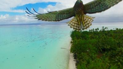 Top 10 photographs taken from drones providing you with a bird's-eye view. These photos were originally collected and posted by Dronestagram.