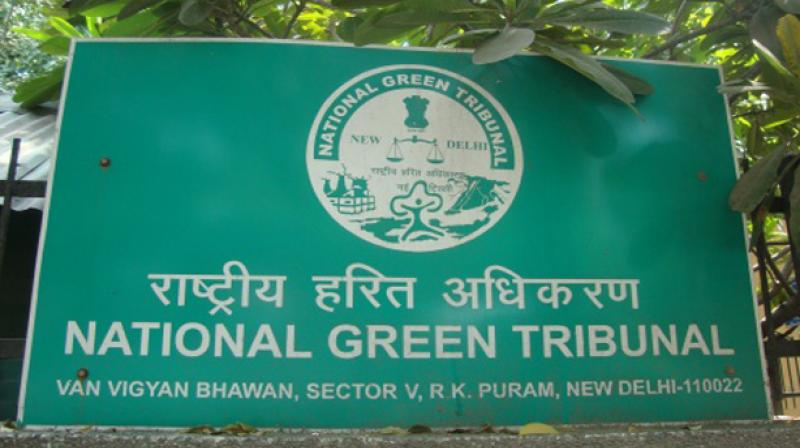 File photo of the National Green Tribunal.