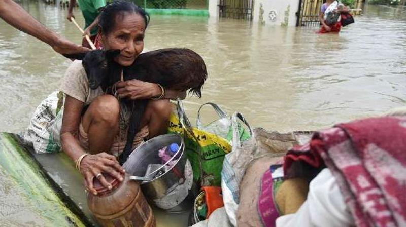 A woman holds a goat while sitting on a raft at the flood affected Koliabor village some 186km from Guwahati Assam