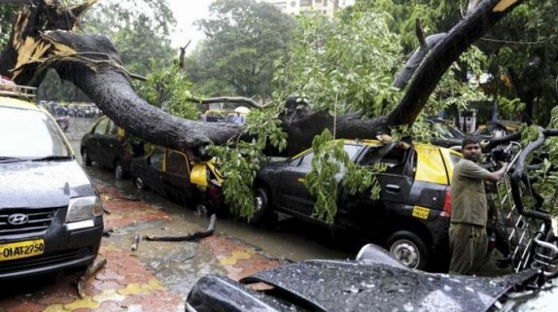 Tree branches shattered windshields and dented car tops. (Photo: Twitter/@ParagonWorli18)