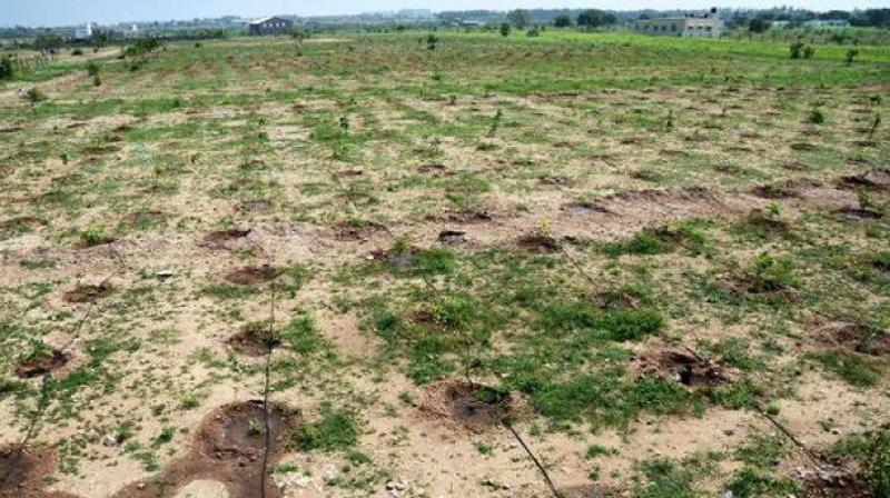 Soil contamination a new problem in visakhapatnam for Soil pollution