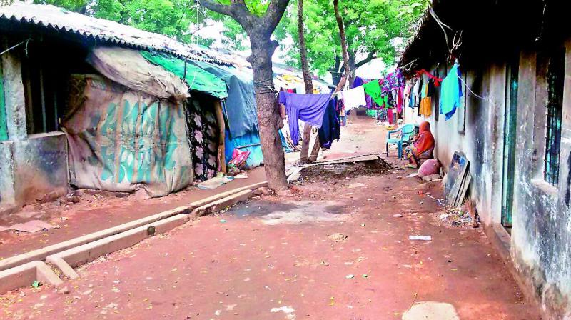 India urged not to deport Rohingya Muslims