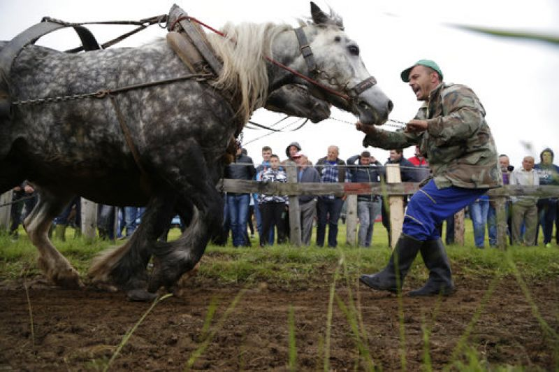 The festival took place in the town of Sokolac, Bosnia, on Sunday, June 18, 2017.  (Photo: AP)