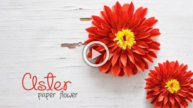 DIY Aster Flowers