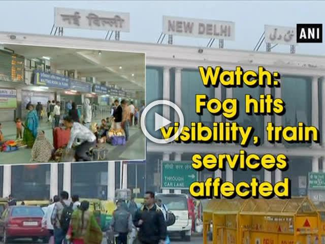 Watch: Fog hits visibility, train services affected