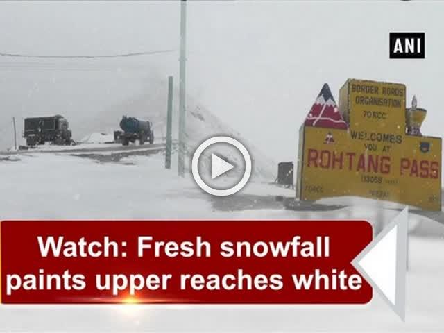Watch: Fresh snowfall paints upper reaches white