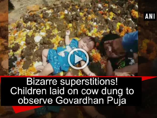 Bizarre superstitions! Children laid on cow dung to observe Govardhan Puja